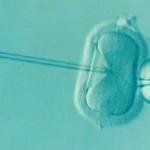Kaizen Can Reduce Infertility